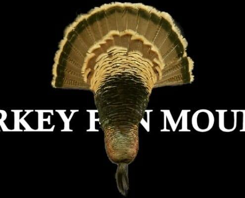 Turkey Fan Mounts